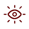 Critical Insights Icon